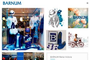 <strong>Barnum www.barnum.es<span></span></strong><i>&rarr;</i>